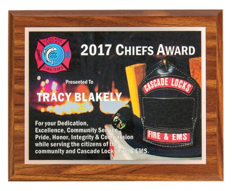 Customized plaque with full color plate. Logos, photos, and designs can be added to make this award unique.