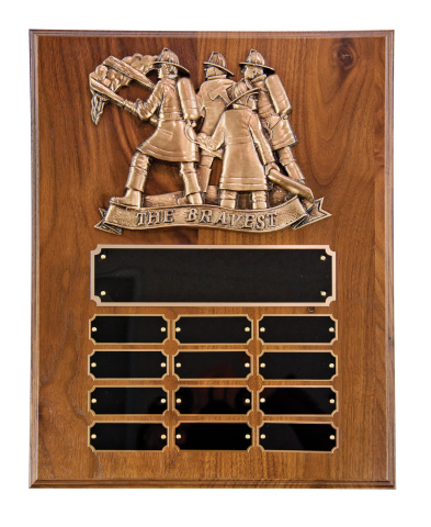 Plaques can be customized with various plaque mounts, full color or laser engraved logos, pictures, or badges.