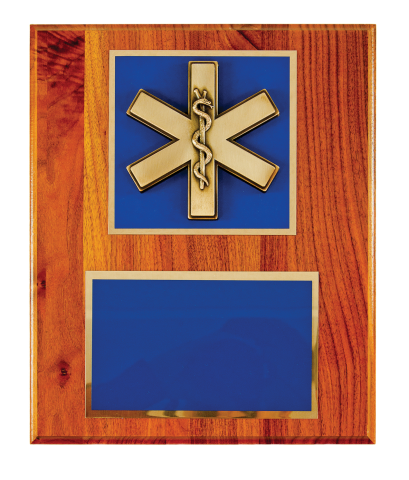 Bronze finish Cross of Life with brass engraving plate mounted on plaque.