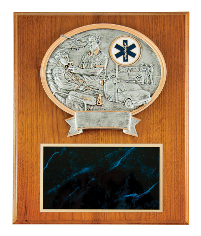 "Oval casting of paramedics working on a patient with the medic unit in the background, and Star of Life emblem mounted on solid walnut 12""x15"" plaque, with engraving plate"